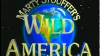 Abertura De América Selvagem (Wild America) TV Cultura