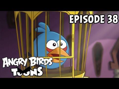 Angry Birds Toons #38 - Nejlepší přítel prasate