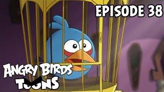 Angry Birds Toons #38 - Najlepší priateľ prasaťa