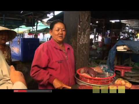 CURRENT TV avian flu 2006 part 3 of 4 (Vietnam)