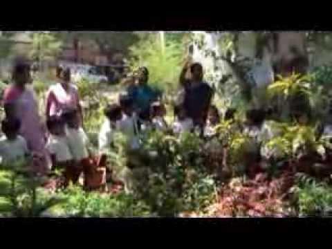My Madurai School - VBM field trip -  Nursery Garden