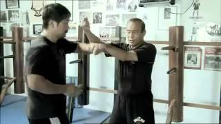Tracing The Legacy From Ip Man To Bruce Lee