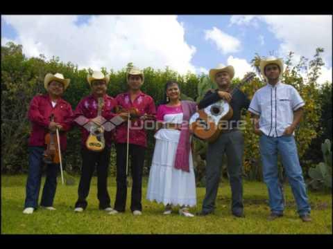 Los Leones de la Sierra de Xichu-Mexico es Magia