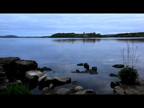Relax-Tranquil sounds of nature-Beautiful instrumental music by Bach-Calm water-Wildlife images