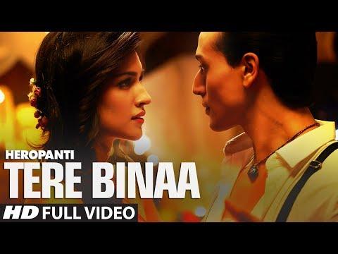 Tere Binaa