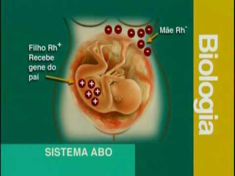 A 07 - Sistema ABO e RH - Biologia - Vestibulando Digital