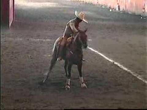 cala caballos