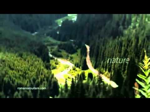 Romania, Explore the Carpathian garden - Nature