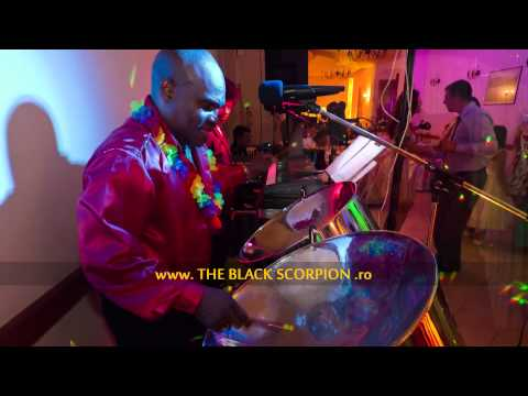 The Black Scorpion Daniel Sealey - The Plain Truth