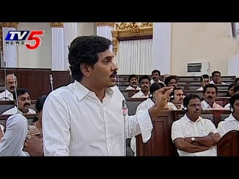 Don't Comment on YS Rajasekhara Reddy & Vijayamma | YS jagan : TV5 News