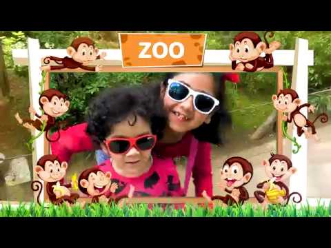 Happy Kids at Zoo 🤩   Learning Zoo Animals Compilation Video for Children