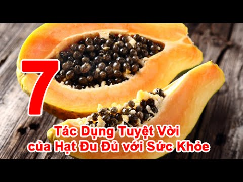 7 Tác Dụng Tuyệt Vời của Hạt Đu Đủ với Sức Khỏe