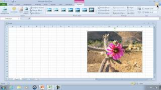 Excel 2010 Tutorial 1 Getting Started And Free Download