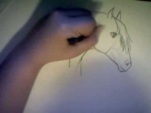 Tutorial come disegnare un cavallo parte 1 draw a horse for Disegno di un cavallo da colorare