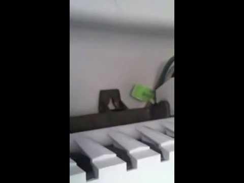 Whirlpool - Maytag Freezer leaking water onto floor - YouTube
