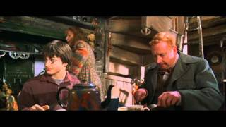 Harry Potter And The Chamber Of Secrets Harry's First