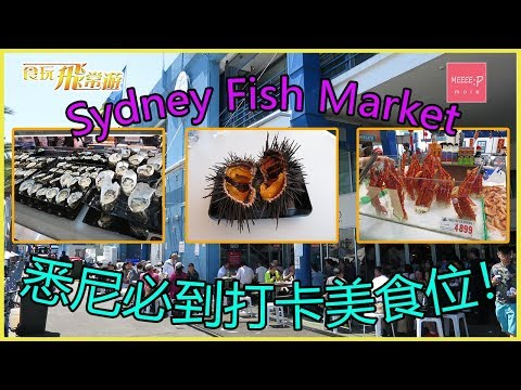 Sydney Fish Market 悉尼必到打卡美食位! SFM