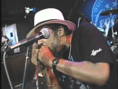 Chicago Blues Live - From Buddy Guy's Legends Club - Vol 05