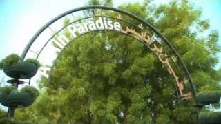 Добро пожаловать в Al Ain