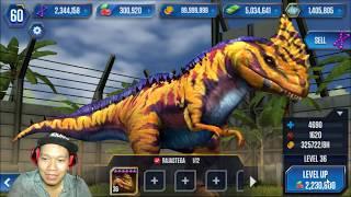 Jurassic World The Game HNT chơi game nuôi khủng long Jurassic World HD 1080 HNT Channel New 50