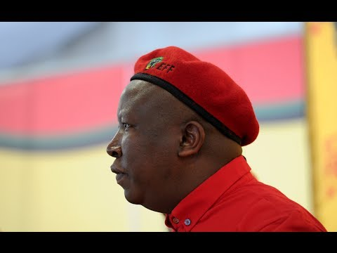 Malema's vision for land reform