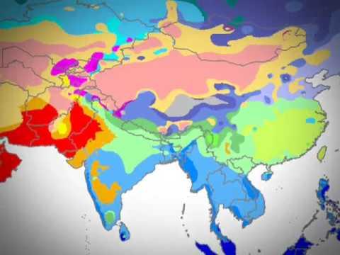 Climate & Vegetation