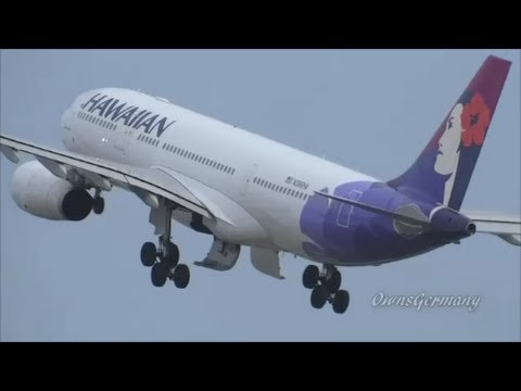 6 Hawaiian Airlines Airbus A330's HNL Honolulu, Hawaii Plane Spotting