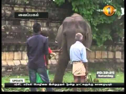 Shakthi Tv News 1st tamil - 10.8.2013 - 8 pm