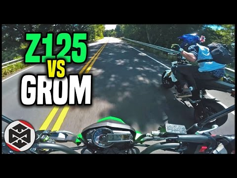 HE BEAT ME | First Ride - Kawasaki Z125 vs Grom