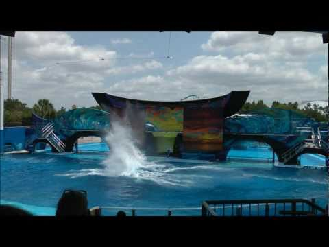 One Ocean, SeaWorld Orlando HD (1080p)
