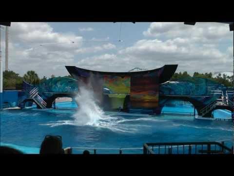 One Ocean, SeaWorld Orlando HD (1080p)
