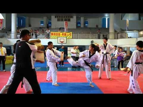 2014第一屆台灣國際武術功夫節-10