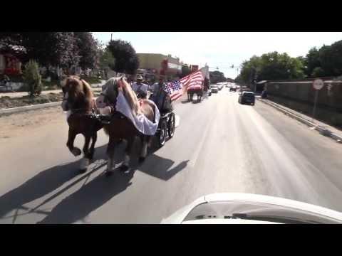 Nunta de 7 stele - Videoclip