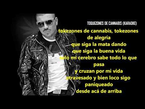 Tokezones De Cannabis (Karaoke) - El Komander ' Corridos Abril 2013 HD