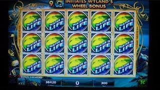 Wyland NEW SLOT MACHINE MAX BET Bonus Round Win