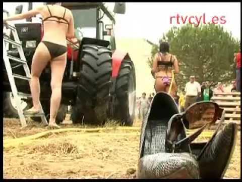 Chicas 'lava tractores' en San Pedro de la Viña, Zamora