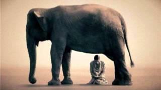 """""""Los 4 sabios y el elefante"""" - Cuento de desarrollo personal"""