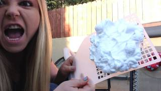 [Fly Swatter- Shaving Cream Slap Prank] Video
