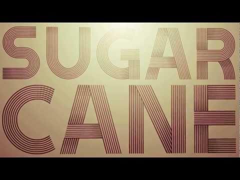 Shaggy - Sugarcane (Official Audio with Lyrics)