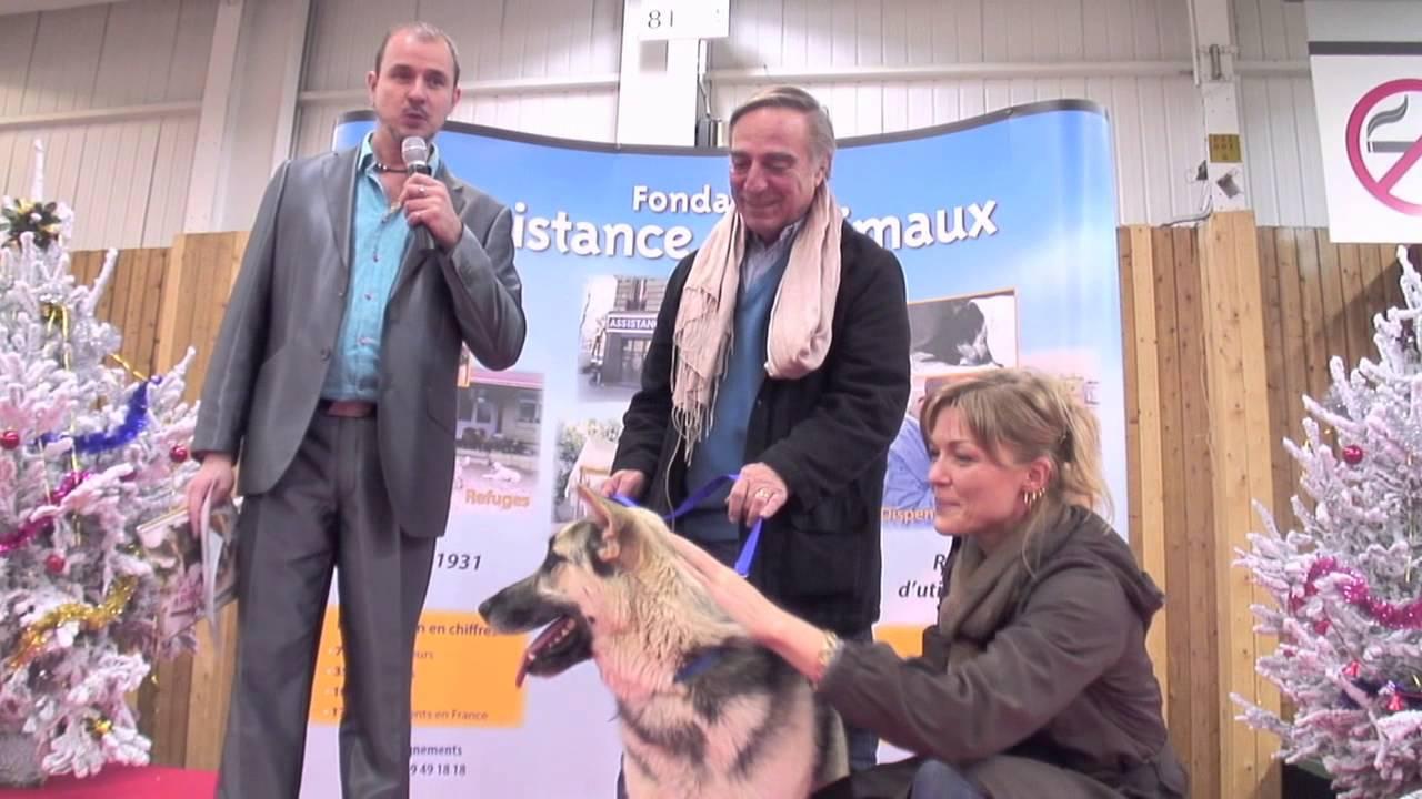 Noel des animaux 2012 paris porte de versailles 24 25 novembre 2012 youtube - Animaux porte de versailles ...