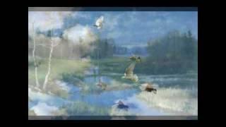 Violin sonata №5 'Spring', Op.24 - I. Allegro