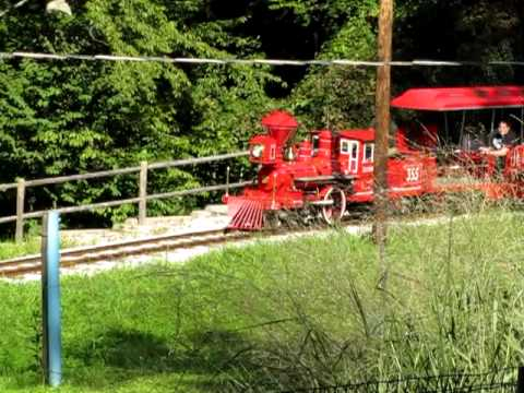 Train at Balt zoo