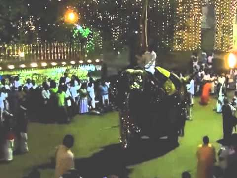 Perahera elephant out of control (Kelaniya, January 13, 2013