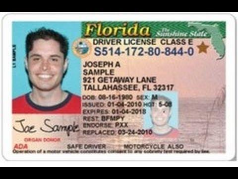 drivers license renewal florida documents