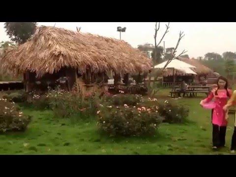 [ Truyện cổ tích Việt Nam]  Sự tích Sọ Dừa - Phiên bản lỗi