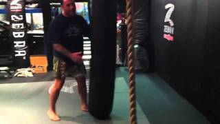Joe Rogan Demonstrates the Turning Side Kick