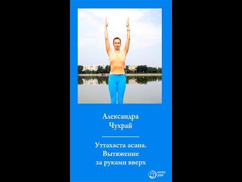 Йога. Урок 1. Уттахаста асана. Вытяжение за руками вверх