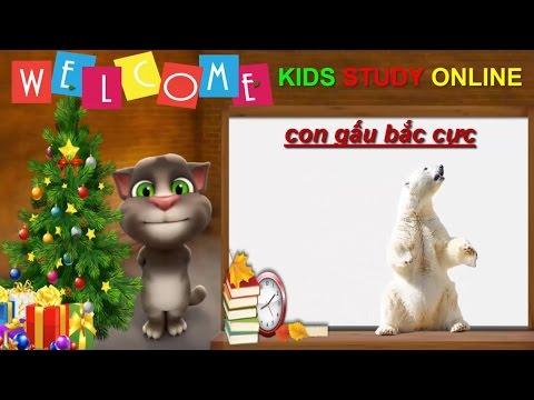 Hoạt hình mèo Tom dạy Bé tập nói Con Gấu Bắc Cực rất vui nhộn và hữu ích