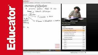 """Overview of Glycolysis"" 