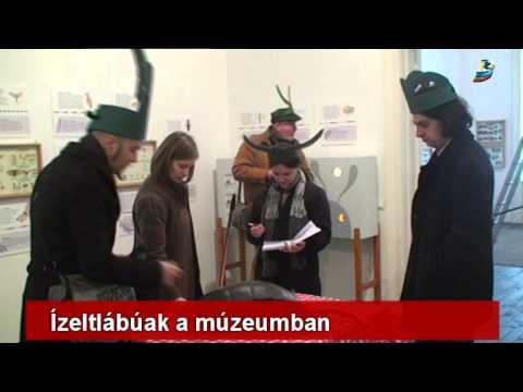 Vándorkiállításaink: Variációk hat lábra - Haáz Rezső Múzeum